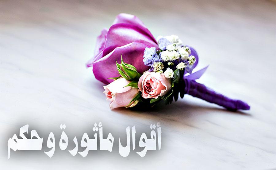 Photo of حكم رائعة: أذهلتنى معانيها..